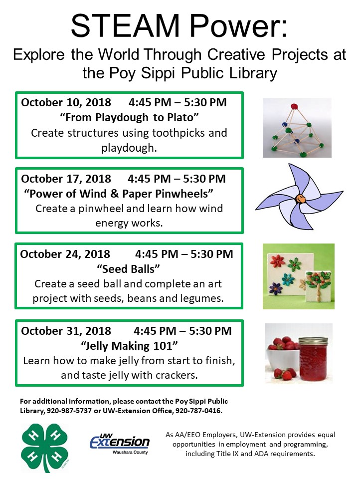 STEAM Power - Creative Projects at Poy Sippi Library